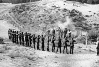 Умела ли воевать Красная Армия?